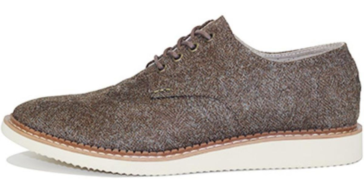 TOMS Brogue Chocolate Brown Suede 45 pVOqn