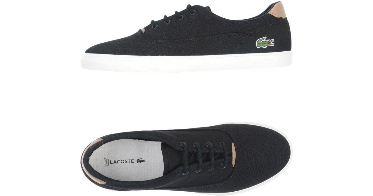 Lacoste Canvas Low-tops \u0026 Sneakers in