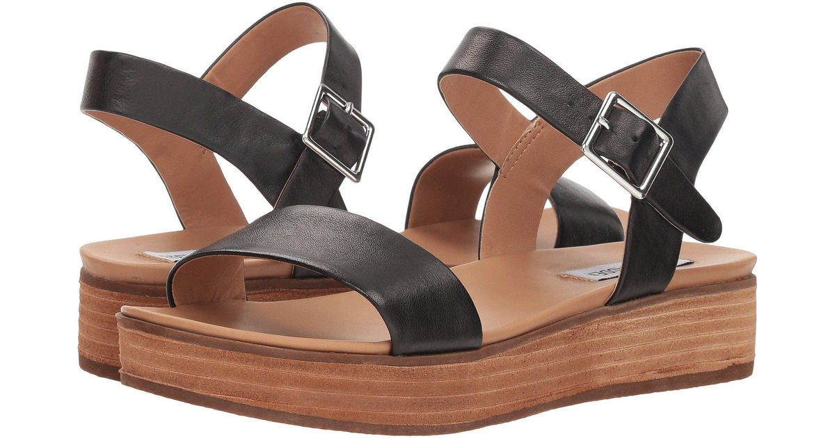 7e7fc1b1320 Steve Madden Multicolor Aida (black Leather) Women's Shoes
