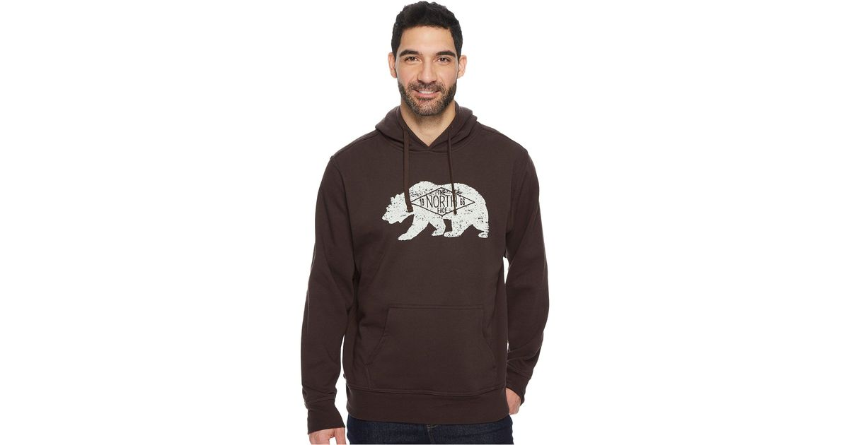 7bf807d85 The North Face Brown Bearitage Hoodie for men