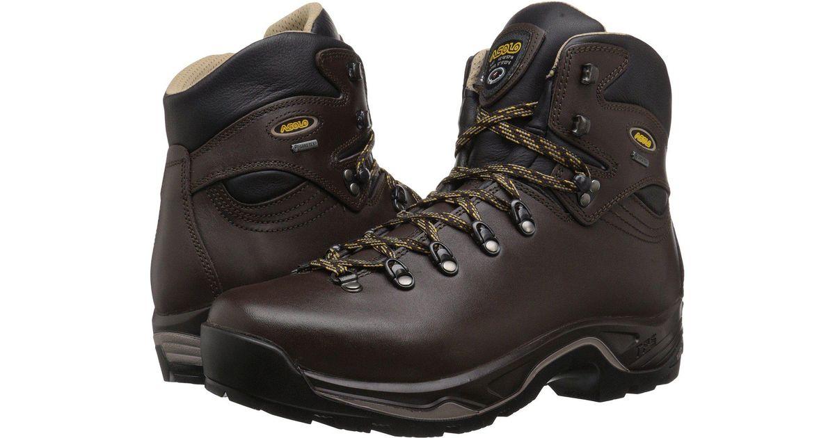 0e6b60118d3 Asolo Brown Tps 520 Gv Boot for men