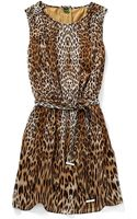 C. Wonder Leopard Print Belted Dress - Lyst