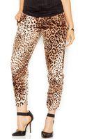 Guess Midrise Leopardprint Soft Pants - Lyst