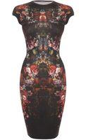 Alexander McQueen Painted Flowers Cap Sleeve Pencil Dress - Lyst