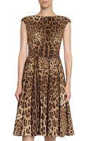 Dolce & Gabbana Leopard Flare Dress - Lyst