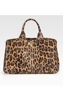Prada Leopardprint Haircalf Tote Bag - Lyst