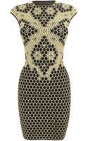 Alexander McQueen Honeycomb Bee 3D Puckering Lace Jacquard Mini Dress - Lyst