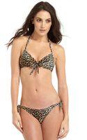 Letarte Cheetahprint Halter Bikini Top - Lyst