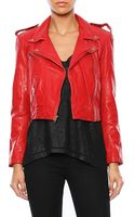 Pam & Gela Cropped Leather Jacket - Lyst