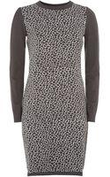 Weekend By Maxmara Leopard Knitted Dress - Lyst