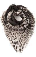 Roberto Cavalli Leopard Print Scarf - Lyst