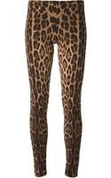 Roberto Cavalli Leopard Legging - Lyst