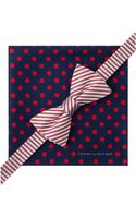 Tommy Hilfiger Stripe Bow Tie Jumbo Dot Pocket Square Set - Lyst