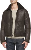 Vince Shearling Furcollar Leather Jacket - Lyst