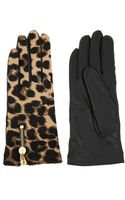 Diane Von Furstenberg Leather and Leopard Print Calf Hair Gloves - Lyst