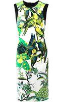 Roberto Cavalli Crewneck Bird Print Dress - Lyst