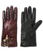 Diane von Furstenberg Snake Zip Gloves - Lyst