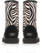 Ugg Classic Short Zebraprint Sheepskin Boots - Lyst
