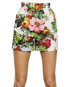 Dolce & Gabbana Printed Stretch Cotton Drill Shorts - Lyst