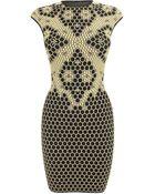 Alexander McQueen Honeycomb Bee 3D Puckering Lace Jacquard Mini Dress - Lyst