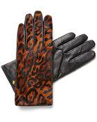 C. Wonder Calf Hair Leather Gloves - Lyst