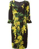 Dolce & Gabbana Acacia Print Dress - Lyst