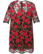 Dolce & Gabbana Rose Embroidered Mesh Dress - Lyst