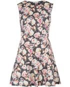 Markus Lupfer Pink Floral Print Fit And Flare Cotton Blend Dress - Lyst