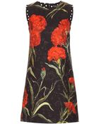Dolce & Gabbana Floral-Printed Jacquard Dress - Lyst
