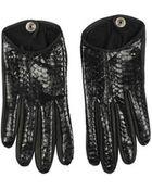 Corlette Python Gloves - Lyst