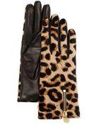 Diane von Furstenberg Leopard-Print Calf Hair & Leather Gloves - Lyst