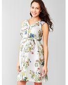 Gap Floral Print Dress - Lyst