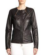 Just Cavalli Perforated Leather Biker Jacket - Lyst