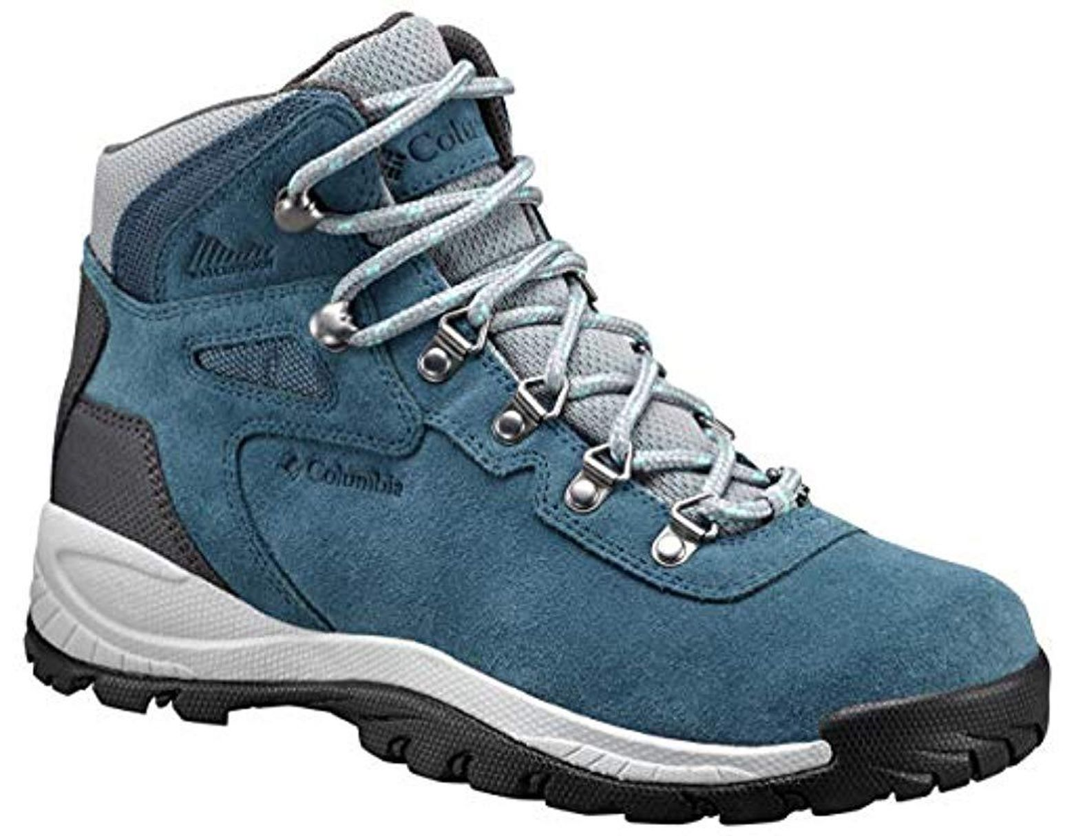 627a0d7b448 Women's Blue Newton Ridge Plus Waterproof Amped Hiking Boot
