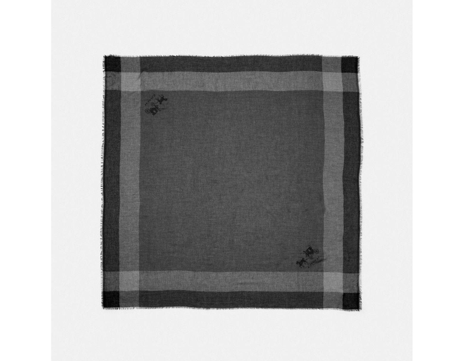 510c782dba Women's Black Windowpane Challis Scarf