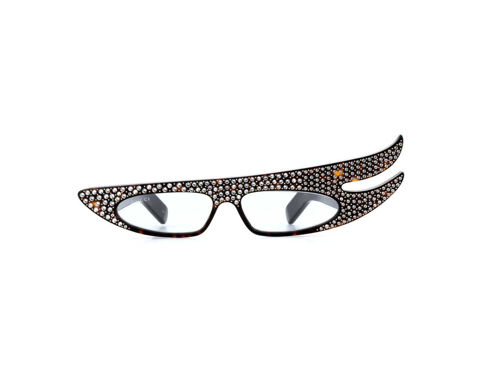 3120b83209 Women's Brown Hollywood Forever Sunglasses