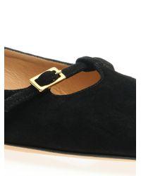 Ferragamo Black Patty Point-Toe Suede Flats