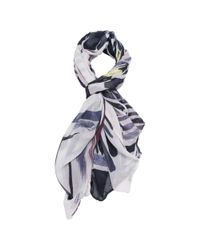 French Connection Multicolor Anya Scarf