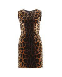 Dolce   Gabbana Leopard-print Velvet Dress in Black - Lyst fb4033738