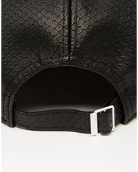 Adidas Originals | Blue 5 Panel Cap In Snake Ab2876 for Men | Lyst