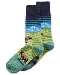 Hot Sox Blue Moose Mountain-scene Crew Socks for men