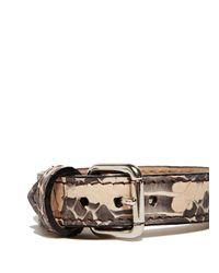 Proenza Schouler Metallic Ps11 Single Bracelet