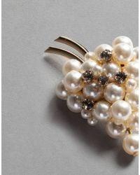 Dolce & Gabbana - Metallic Grape Brooch - Lyst