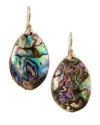 Devon Leigh Multicolor Abalone Shell Oblong Earrings