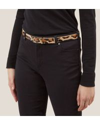 Hobbs - Multicolor Chesterton Belt - Lyst
