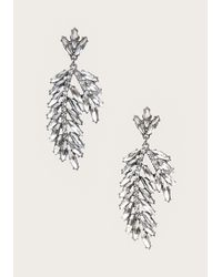Bebe | Metallic Crystal Leaf Earrings | Lyst