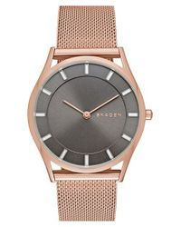 Skagen | Metallic 34mm | Lyst