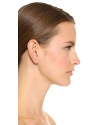 Elizabeth and James Metallic Aloba Stud Earrings - Gold/black/clear