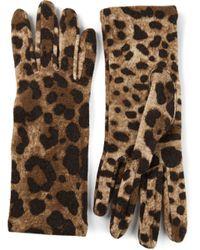 Dolce & Gabbana - Brown Leopard Print Gloves - Lyst