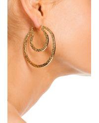 Trina Turk Metallic Double Hoop Earring